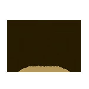 aldovrandi logo